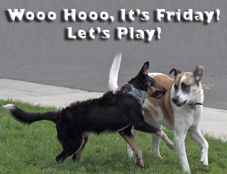 It's friday let's play